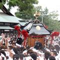 焼津神社荒祭り(8月12日・13日)